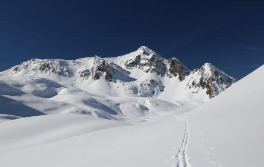 Pizzo Predèlp W (2'585m)