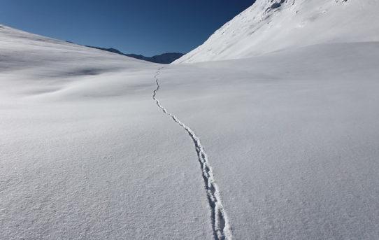 Passo dell'Uomo (2'218 m)