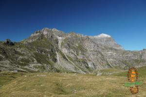 Monte Teggiolo 003